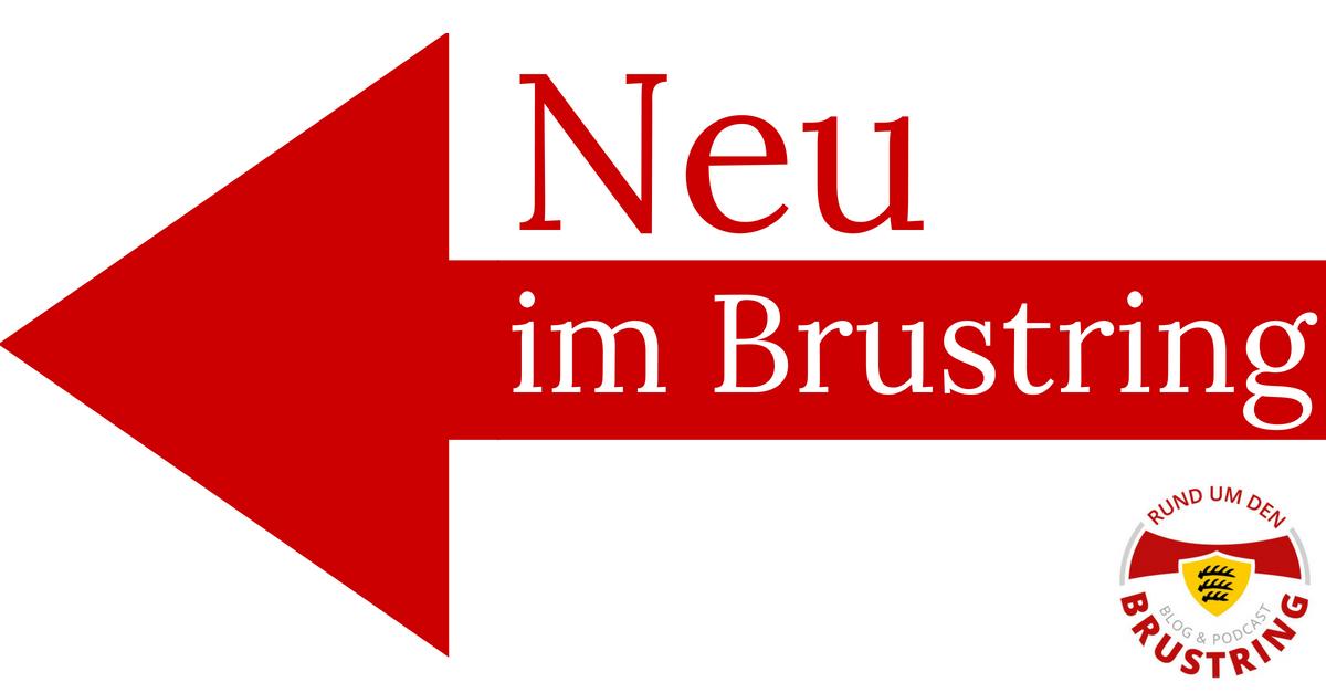 Neu im Brustring: Marc-Oliver Kempf, Borna Sosa, Pablo Maffeo, David Kopacz und Roberto Massimo